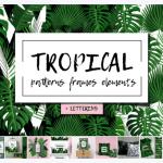 Free Design tropical patterns frames elements