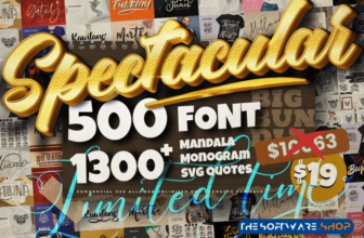 Spectacular Collection Big Bundle Discount Coupon