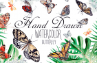 Free Illustration Set: Beautiful Watercolor Butterflies + Extended License