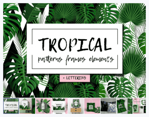 Free Tropical Set: Patterns, Frames, Elements + Bonus