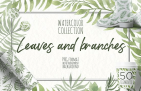 Free Illustration: Watercolor Leaves And Branches
